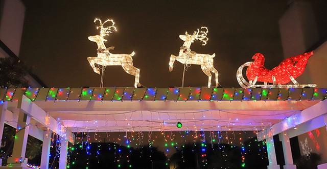 Twilight Christmas Cruise