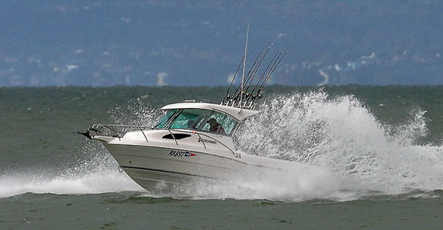 Gala Fishing Comp Saturday 13th Nov